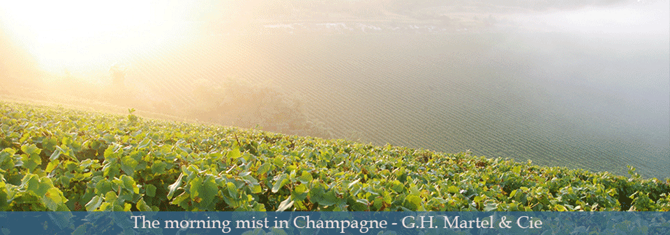 The morning mist in Champagne - G.H. Martel & Cie