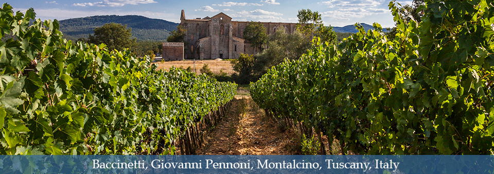 The New soul of Brunello di Montalcino - La Magia