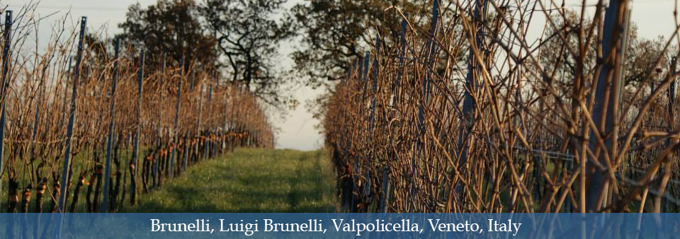 Refined, full of character Amarone - Luigi Brunelli