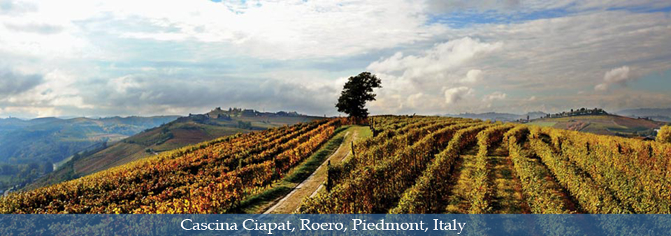 Purity of Piemonte wines - Cascina Ciapat