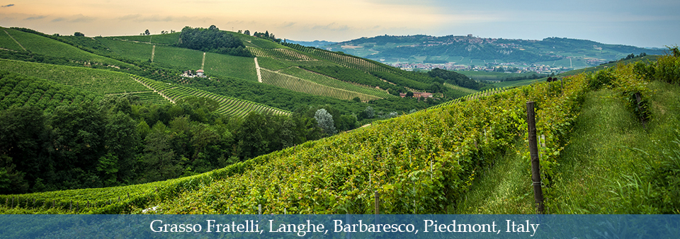Traditional Barbaresco from the heart of Langhe - Grasso Fratelli