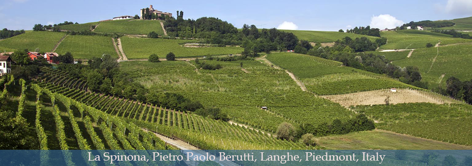 Langhe, home to Barbaresco and Barbera d\'Alba - La Spinona