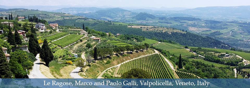 The art of traditional Valpolicella wines - Le Ragose
