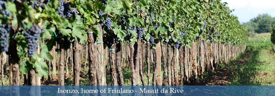 Isonzo, home of Friulano - Masut da Rive